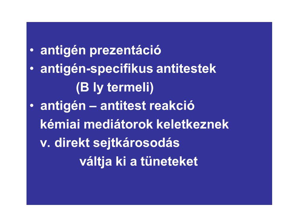 n antigén prezentáció antigén-specifikus antitestek (B ly termeli)