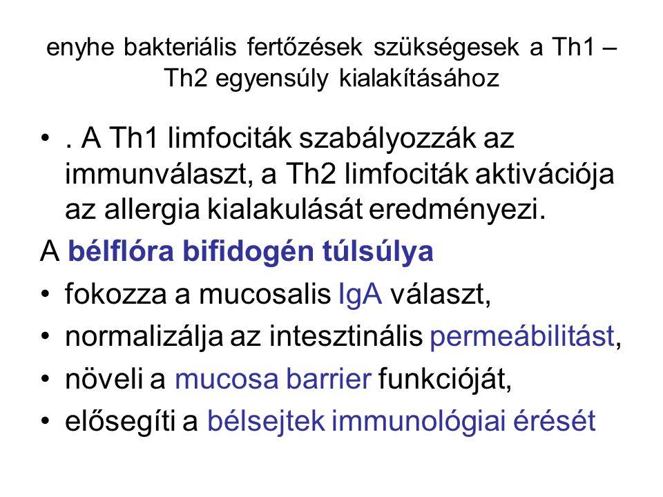A bélflóra bifidogén túlsúlya fokozza a mucosalis IgA választ,