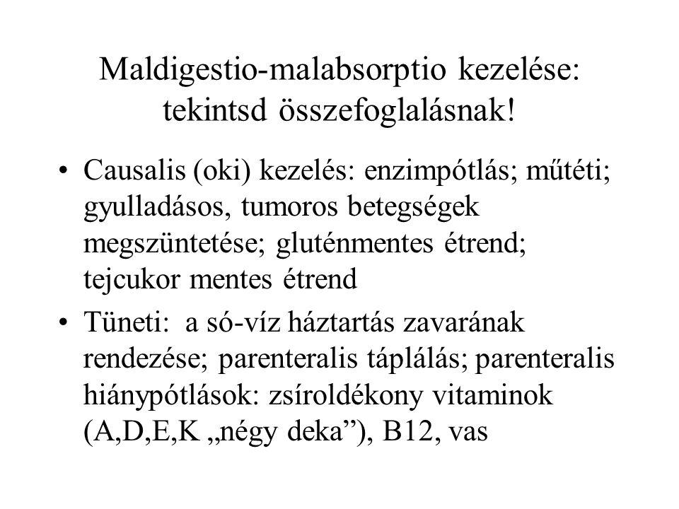 Maldigestio-malabsorptio kezelése: tekintsd összefoglalásnak!