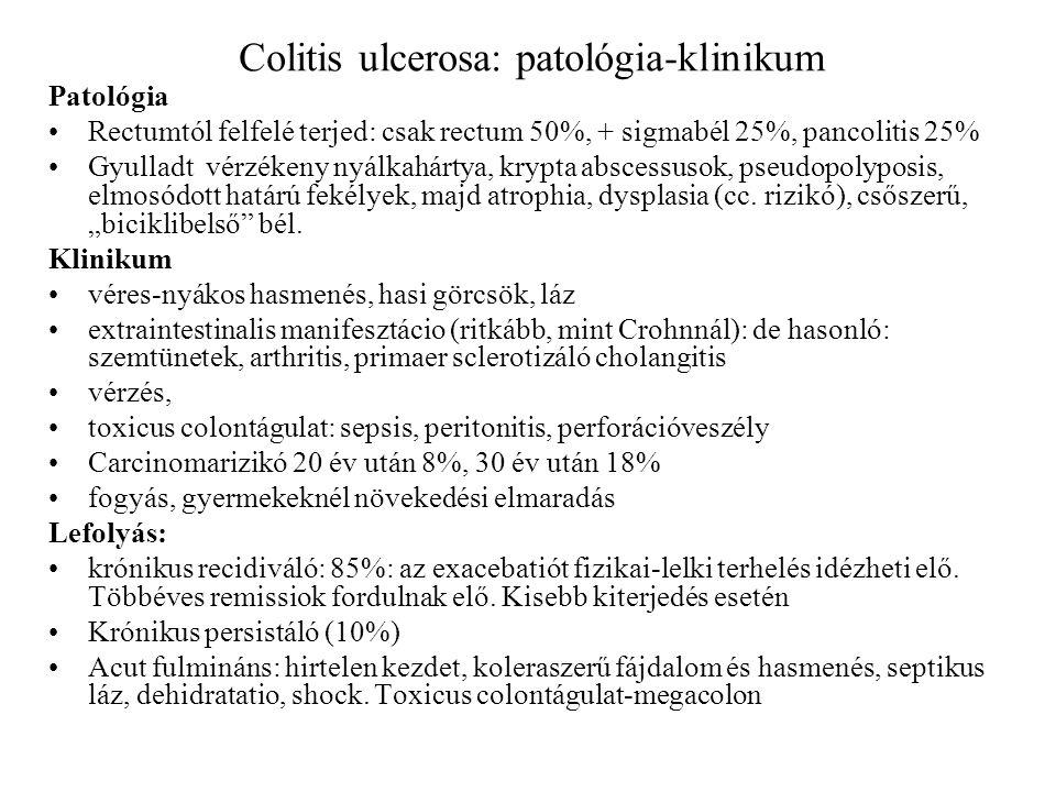 Colitis ulcerosa: patológia-klinikum