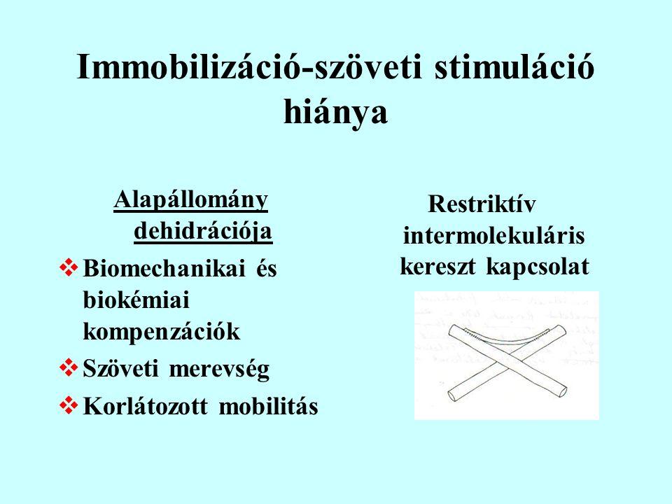 Immobilizáció-szöveti stimuláció hiánya
