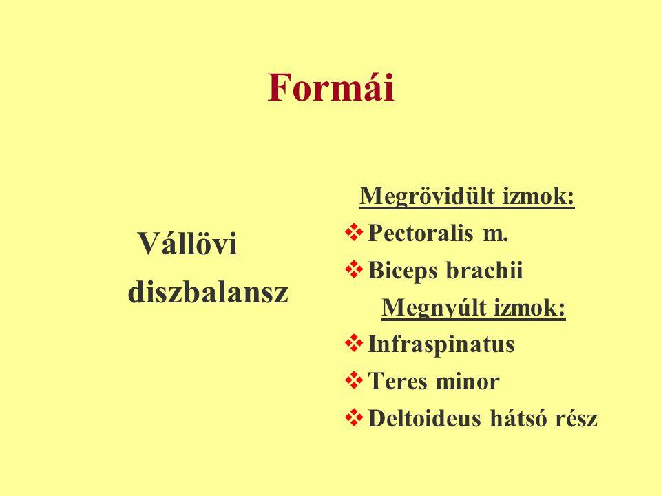 Formái Vállövi diszbalansz Pectoralis m. Biceps brachii
