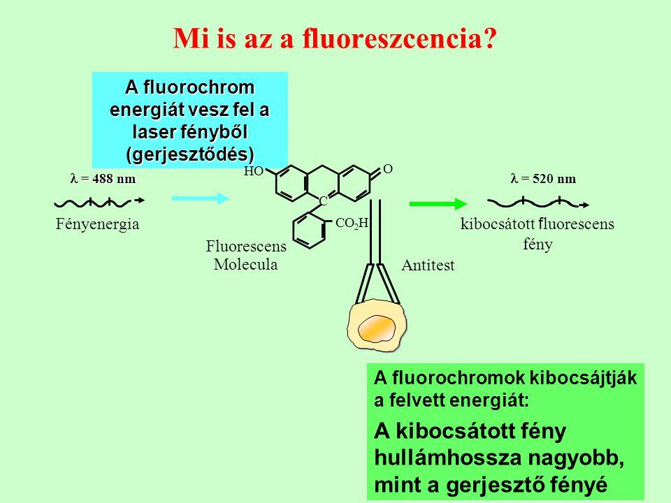 Mi is az a fluoreszcencia