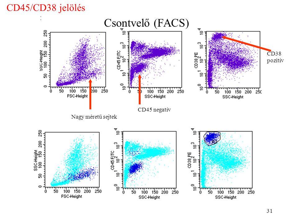 Csontvelő (FACS) CD45/CD38 jelölés CD38 pozitív CD45 negatív