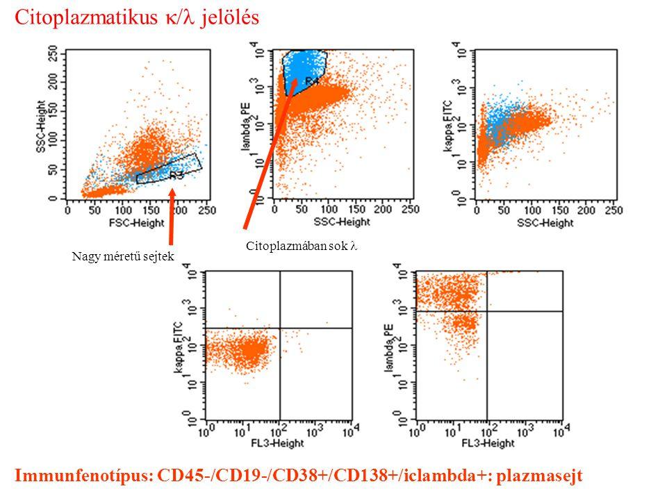 Citoplazmatikus k/l jelölés