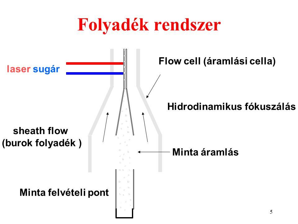 Folyadék rendszer Flow cell (áramlási cella) laser sugár