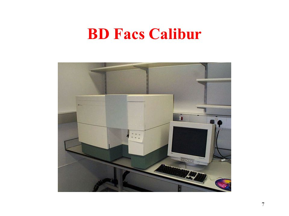 BD Facs Calibur