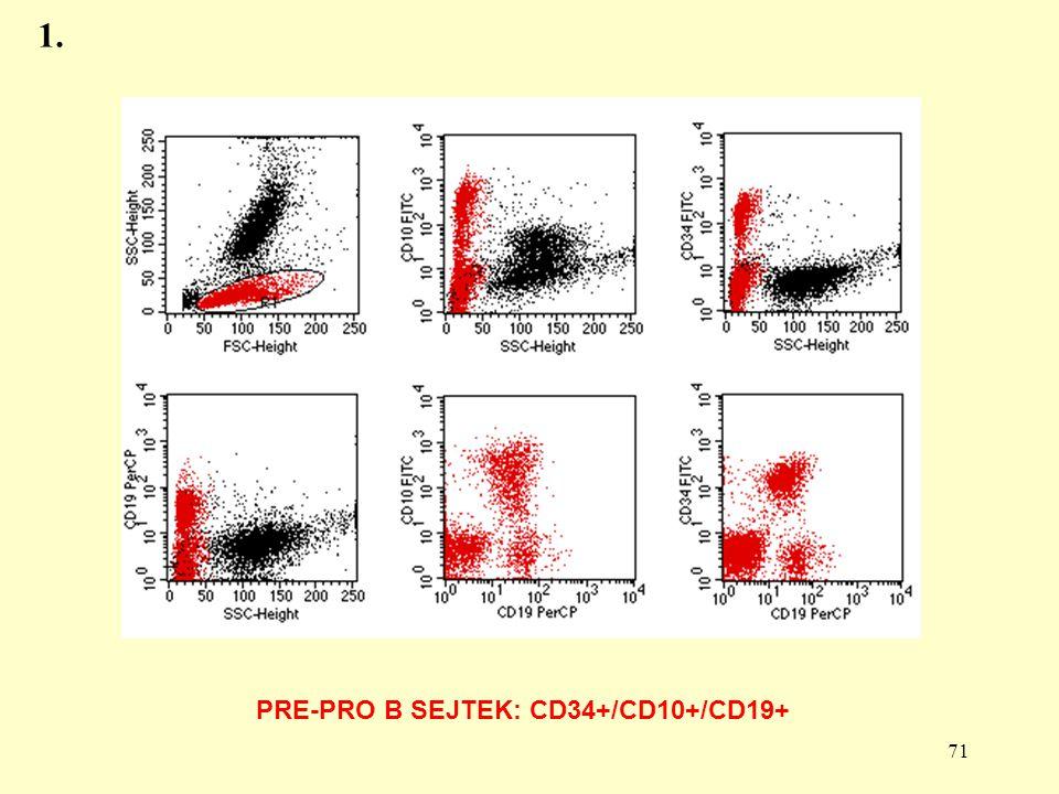 PRE-PRO B SEJTEK: CD34+/CD10+/CD19+
