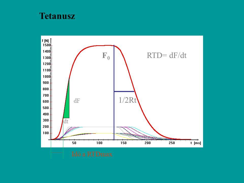 Tetanusz F0 RTD= dF/dt 1/2Rt dF dt Idő a RTDmax