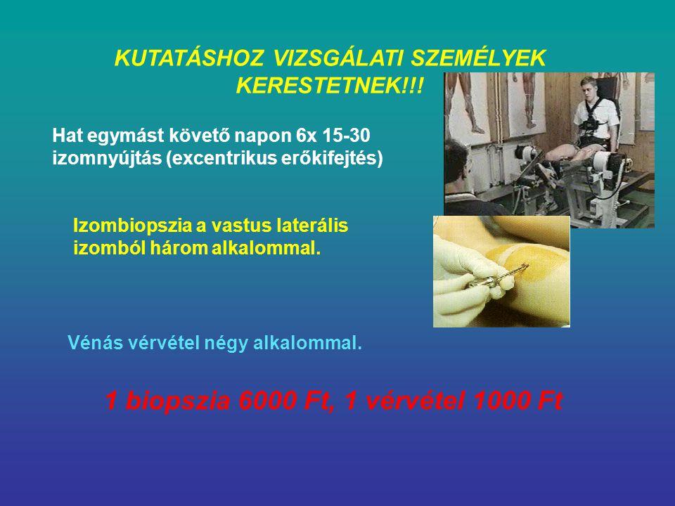 1 biopszia 6000 Ft, 1 vérvétel 1000 Ft
