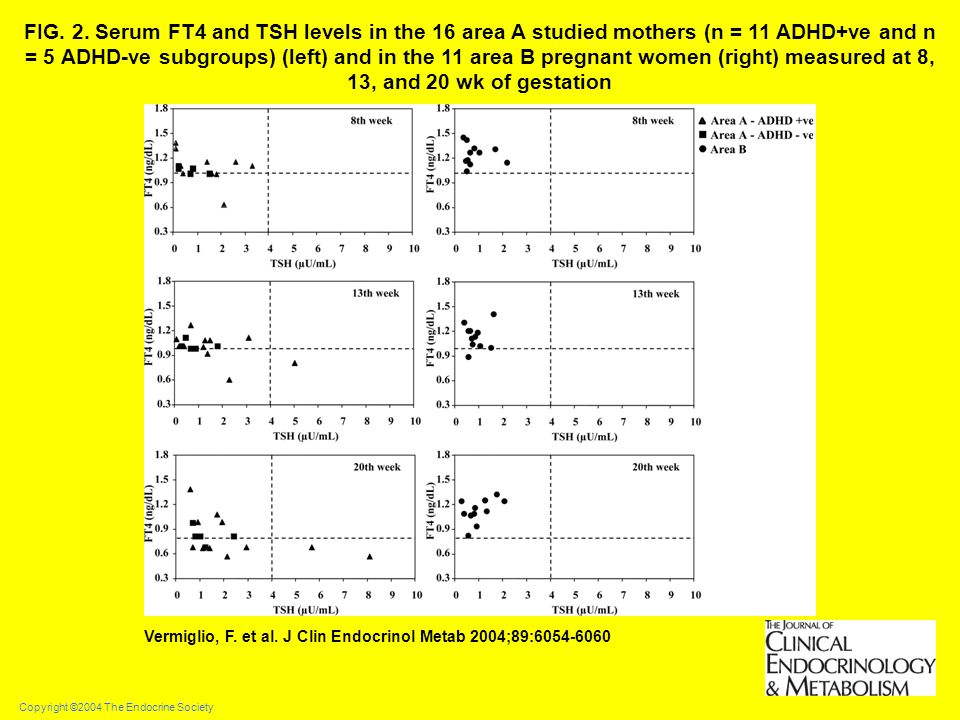 FIG. 2. Serum FT4 and TSH levels in the 16 area A studied mothers (n = 11 ADHD+ve and n = 5 ADHD-ve subgroups) (left) and in the 11 area B pregnant women (right) measured at 8, 13, and 20 wk of gestation