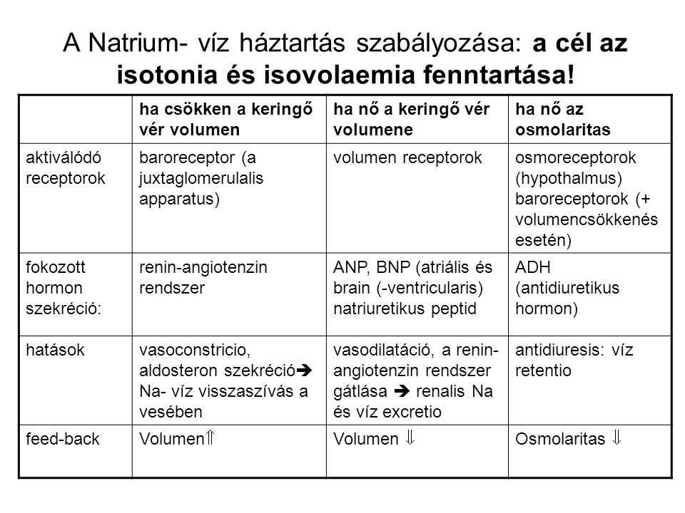 A Natrium- víz háztartás szabályozása: a cél az isotonia és isovolaemia fenntartása!