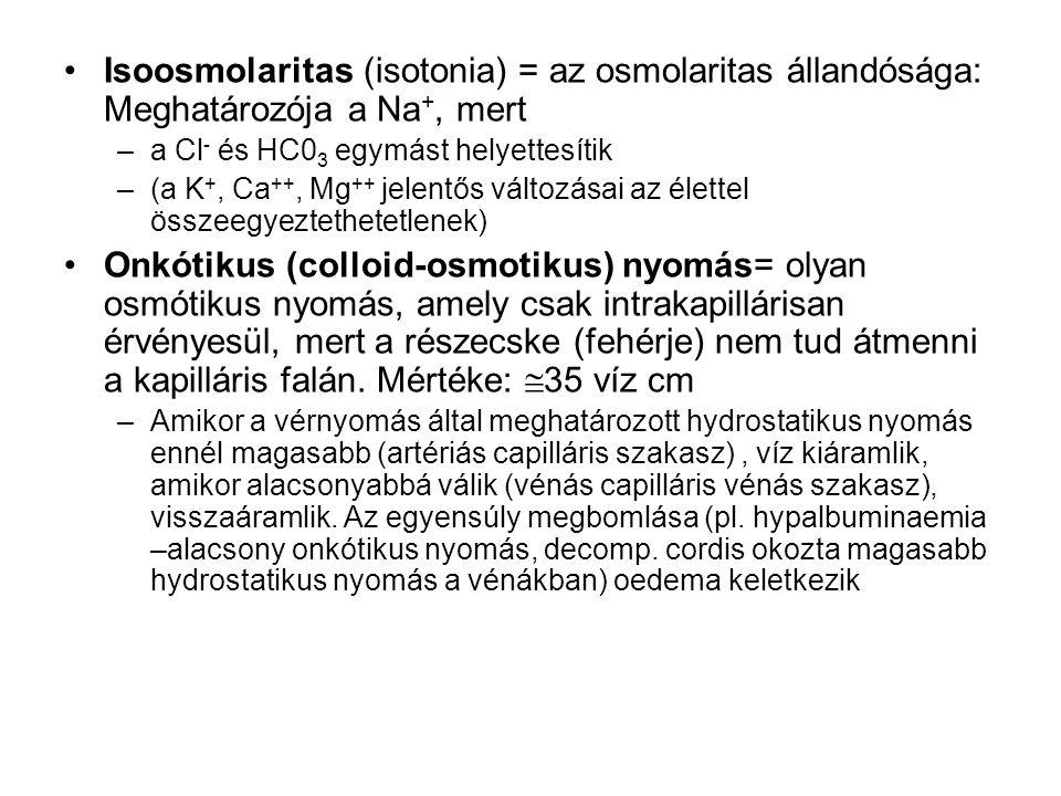 Isoosmolaritas (isotonia) = az osmolaritas állandósága: Meghatározója a Na+, mert