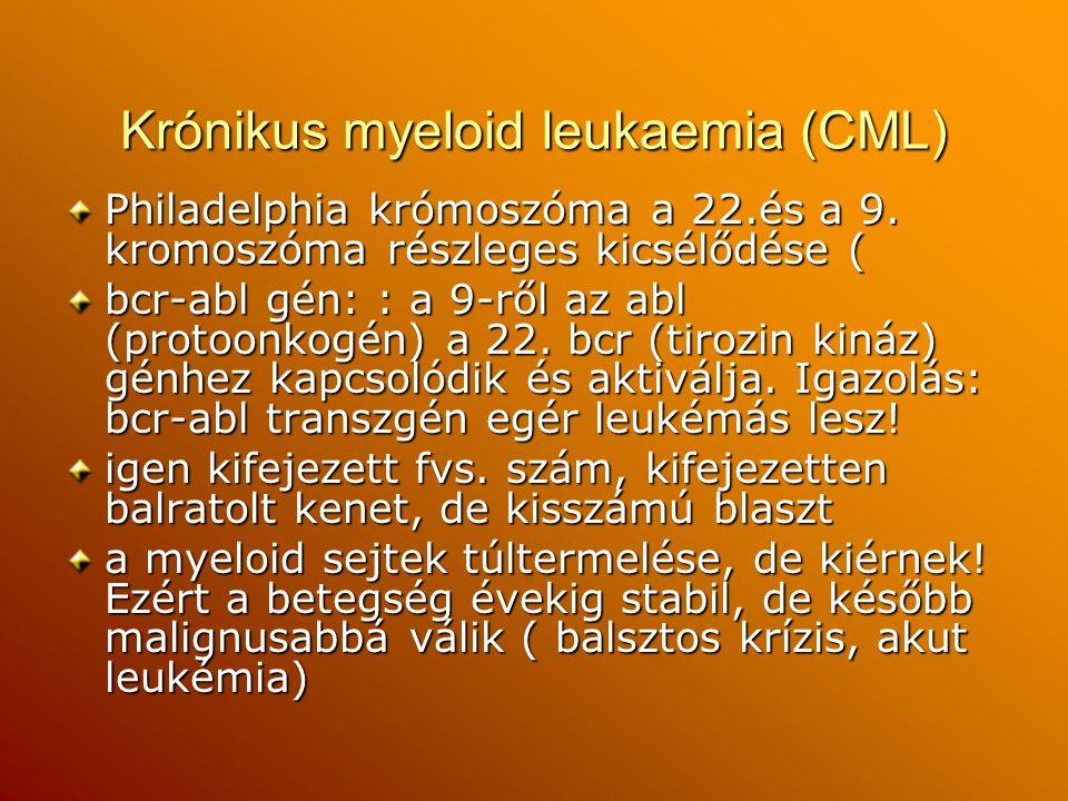 Krónikus myeloid leukaemia (CML)
