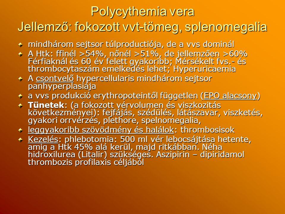 Polycythemia vera Jellemző: fokozott vvt-tömeg, splenomegalia