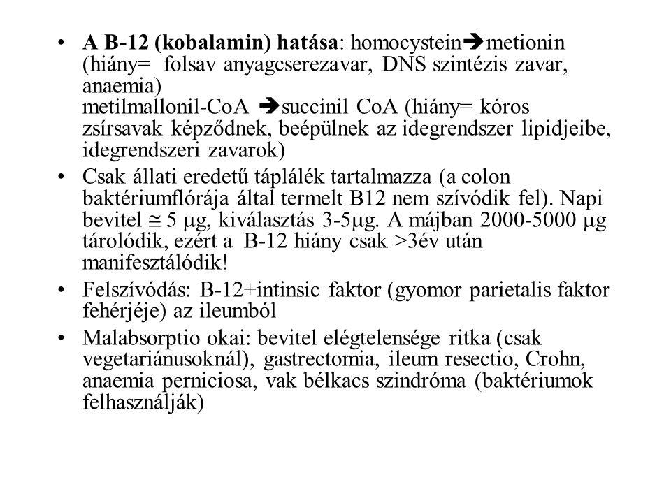 A B-12 (kobalamin) hatása: homocysteinmetionin (hiány= folsav anyagcserezavar, DNS szintézis zavar, anaemia) metilmallonil-CoA succinil CoA (hiány= kóros zsírsavak képződnek, beépülnek az idegrendszer lipidjeibe, idegrendszeri zavarok)