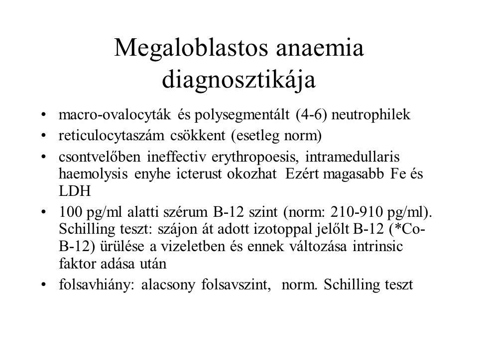 Megaloblastos anaemia diagnosztikája