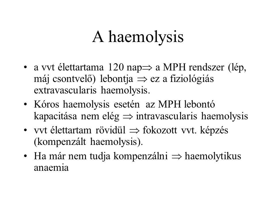A haemolysis a vvt élettartama 120 nap a MPH rendszer (lép, máj csontvelő) lebontja  ez a fiziológiás extravascularis haemolysis.