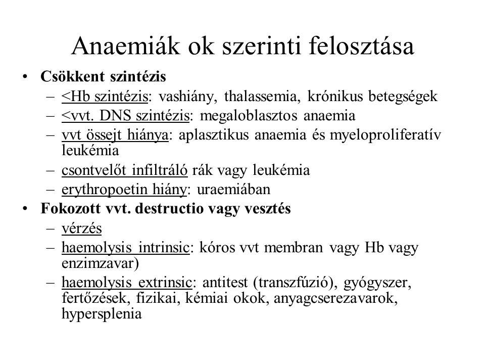 Anaemiák ok szerinti felosztása