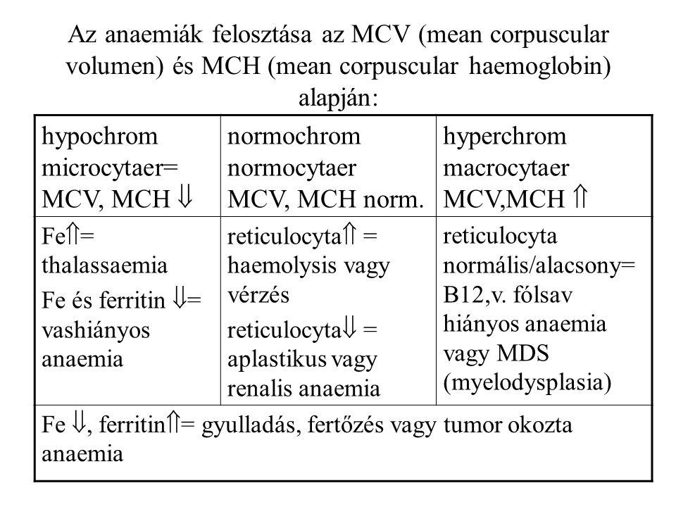 hypochrom microcytaer= MCV, MCH 