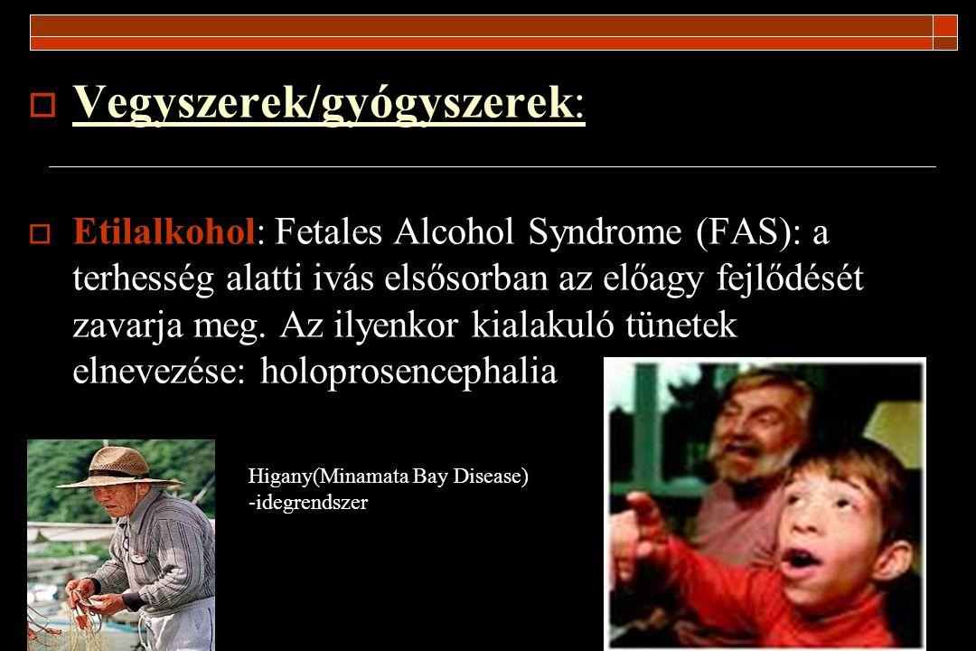 Vegyszerek/gyógyszerek: