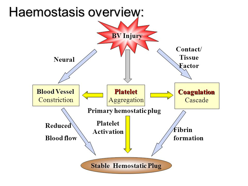 Haemostasis overview: