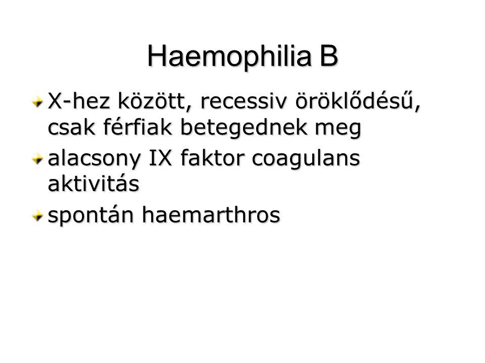 Haemophilia B X-hez között, recessiv öröklődésű, csak férfiak betegednek meg. alacsony IX faktor coagulans aktivitás.