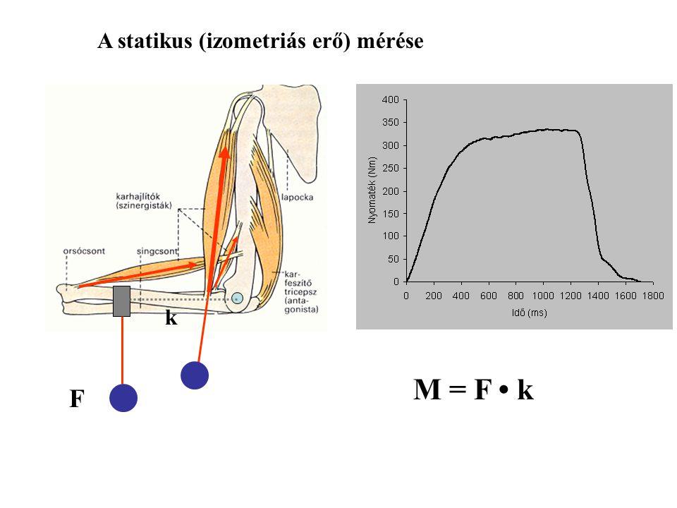 A statikus (izometriás erő) mérése