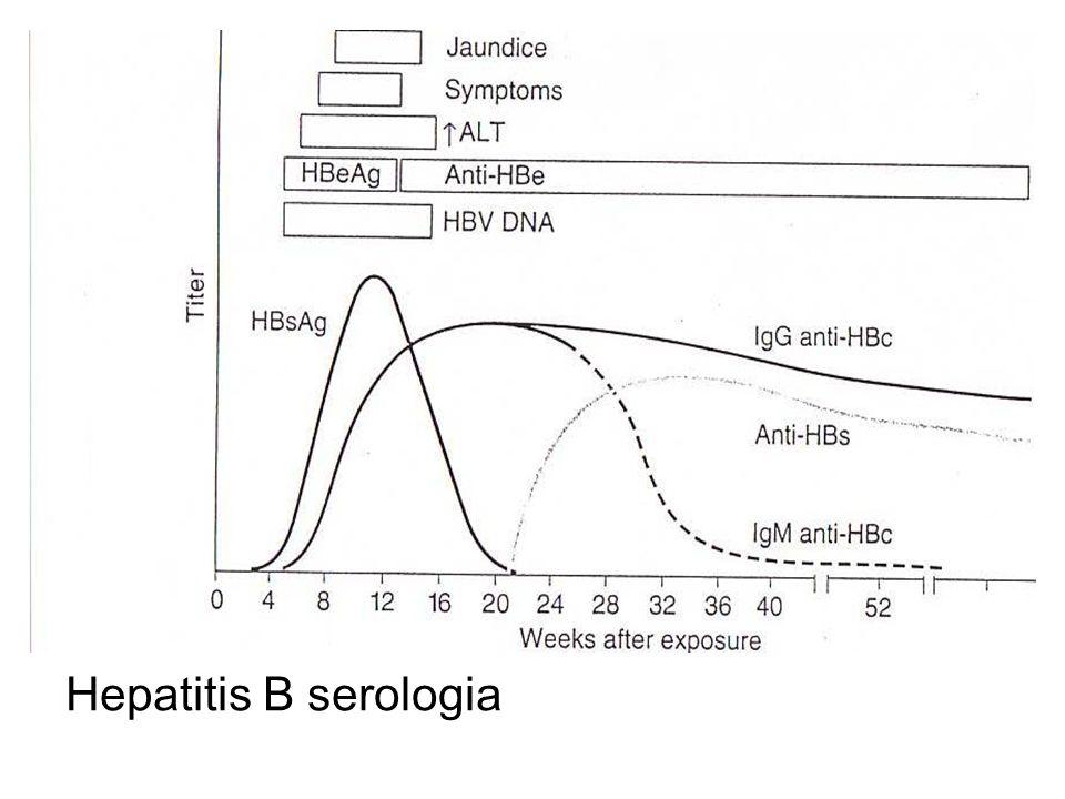 Hepatitis B serologia