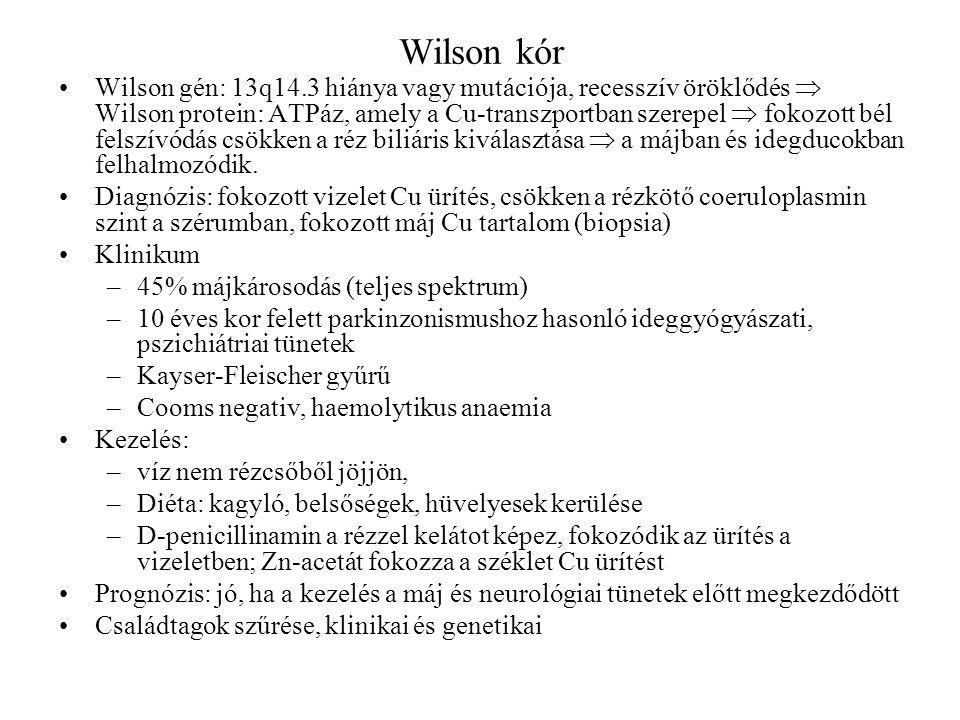 Wilson kór