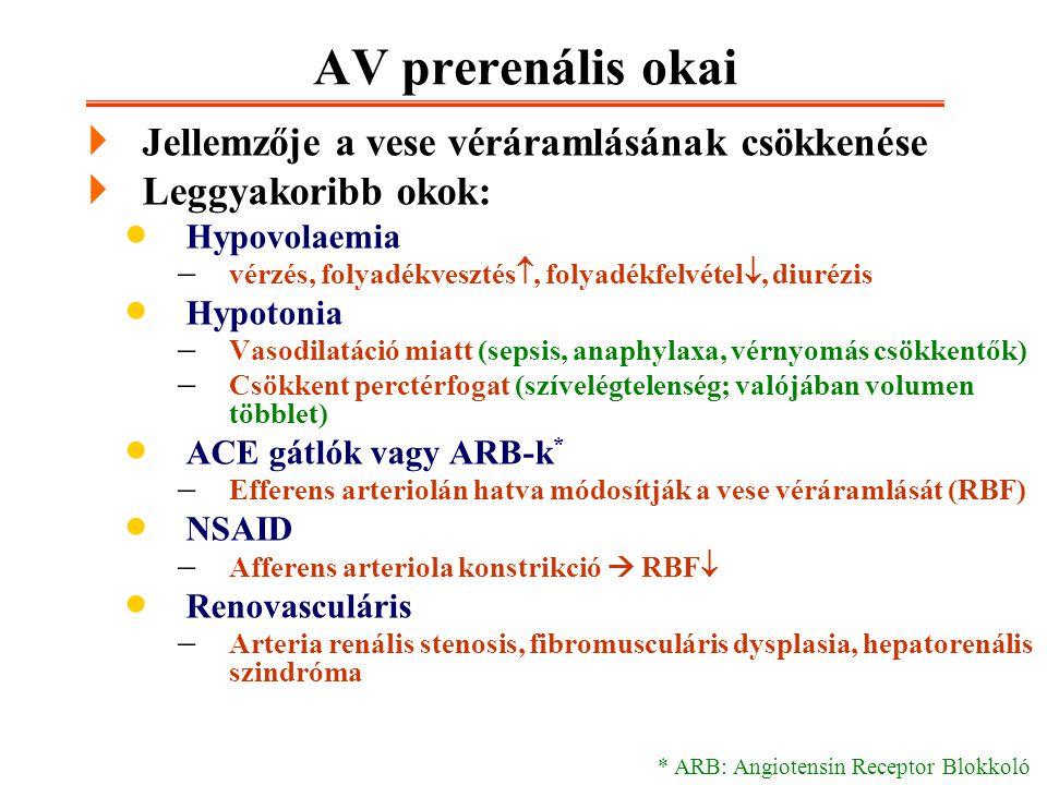 AV prerenális okai Jellemzője a vese véráramlásának csökkenése