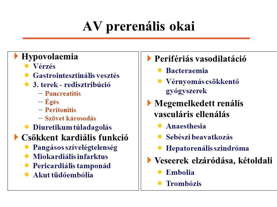 AV prerenális okai Hypovolaemia Csökkent kardiális funkció