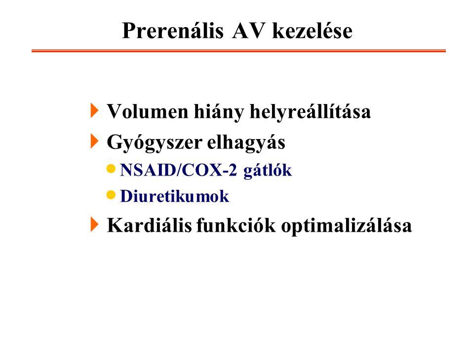 Prerenális AV kezelése