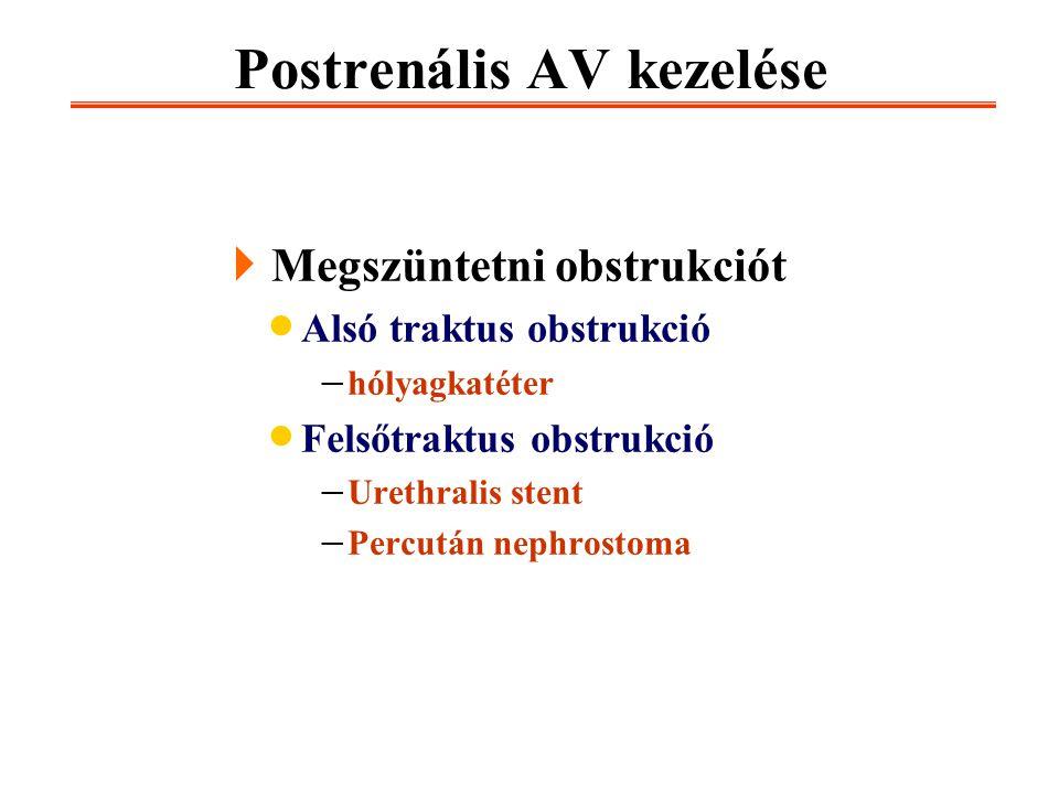 Postrenális AV kezelése