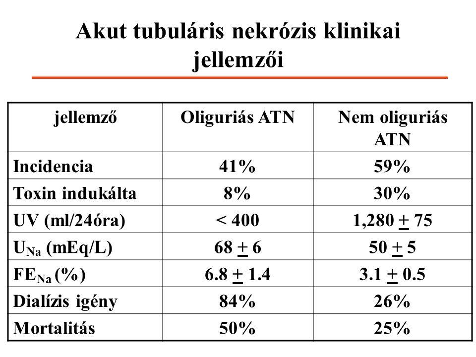 Akut tubuláris nekrózis klinikai jellemzői