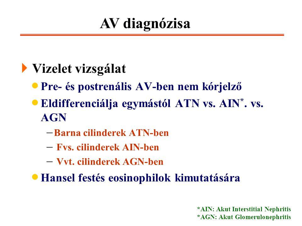 AV diagnózisa Vizelet vizsgálat