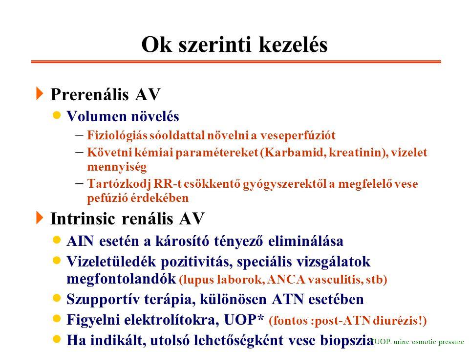 Ok szerinti kezelés Prerenális AV Intrinsic renális AV Volumen növelés