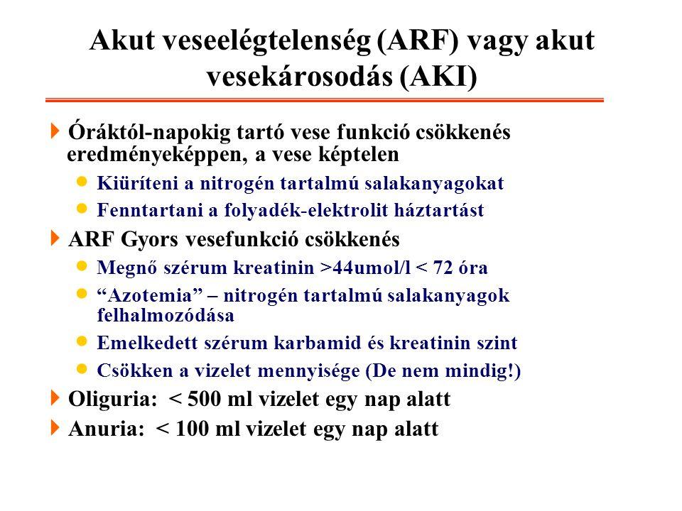 Akut veseelégtelenség (ARF) vagy akut vesekárosodás (AKI)
