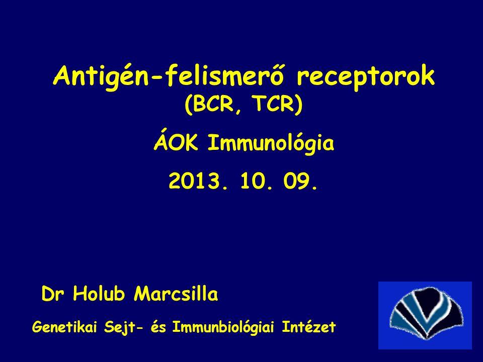 Antigén-felismerő receptorok (BCR, TCR)