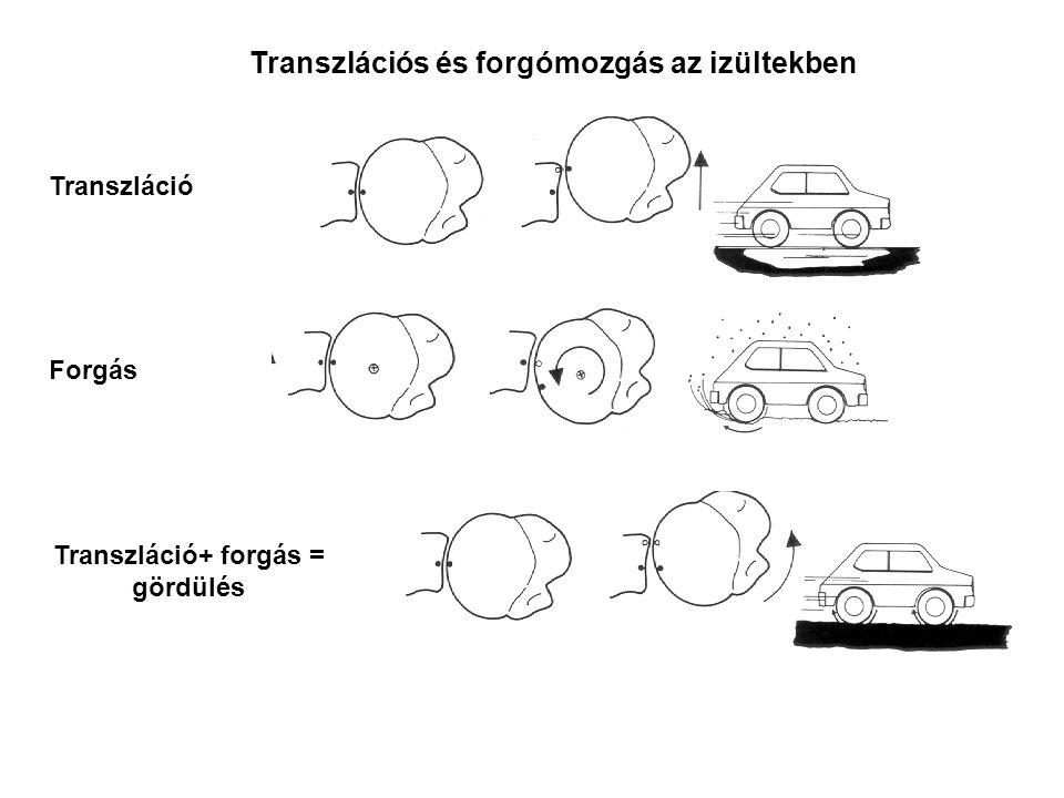 Transzlációs és forgómozgás az izültekben