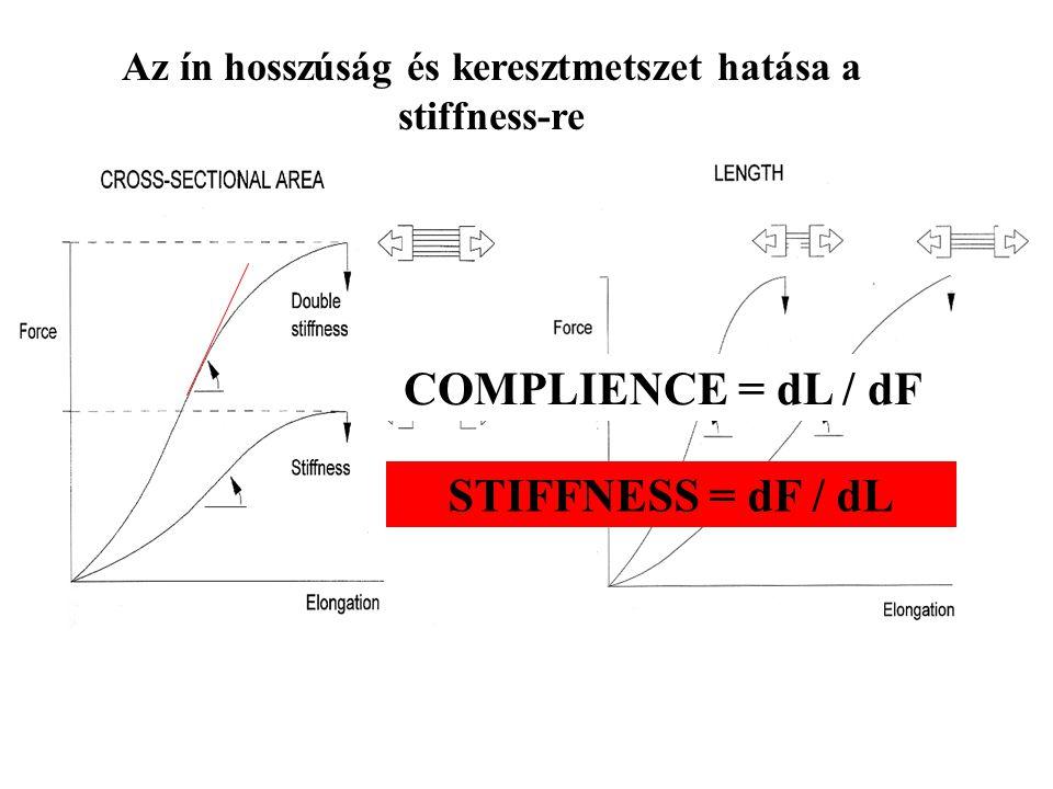 Az ín hosszúság és keresztmetszet hatása a stiffness-re