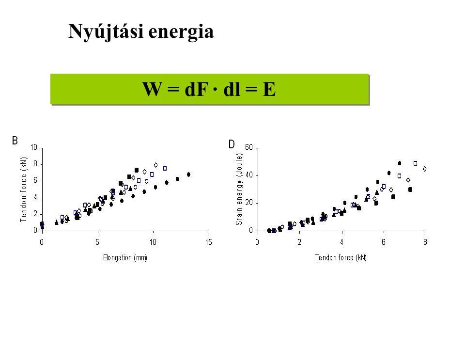 Nyújtási energia W = dF · dl = E
