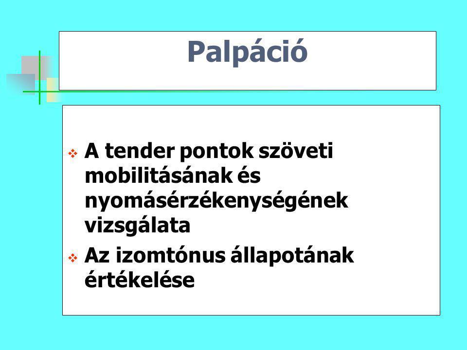 Palpáció A tender pontok szöveti mobilitásának és nyomásérzékenységének vizsgálata.