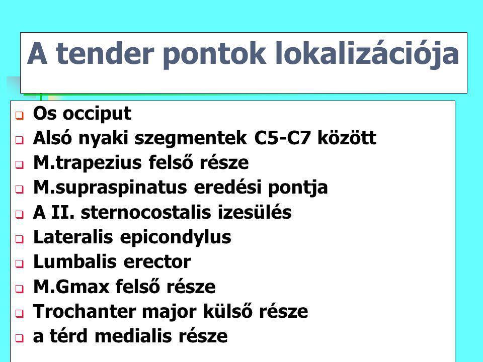 A tender pontok lokalizációja