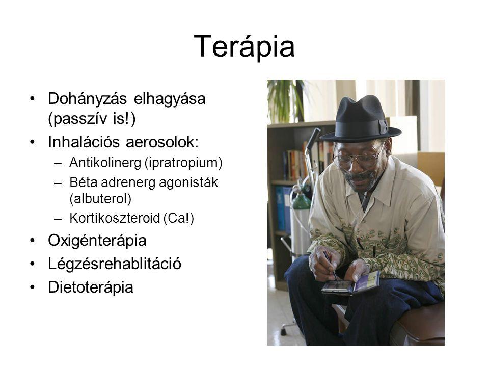 Terápia Dohányzás elhagyása (passzív is!) Inhalációs aerosolok: