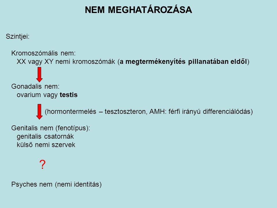 NEM MEGHATÁROZÁSA Szintjei: Kromoszómális nem: