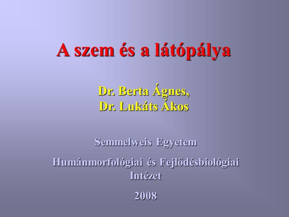 A szem és a látópálya Dr. Berta Ágnes, Dr. Lukáts Ákos