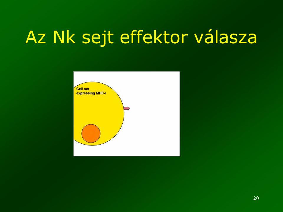 Az Nk sejt effektor válasza