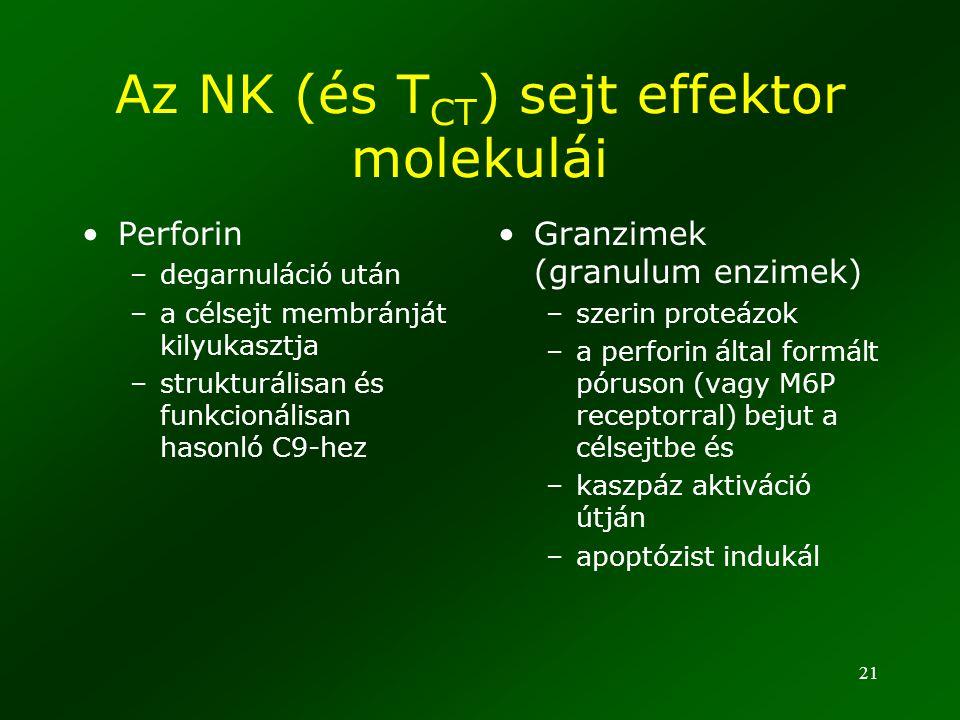 Az NK (és TCT) sejt effektor molekulái