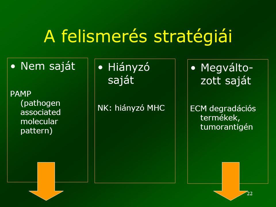 A felismerés stratégiái